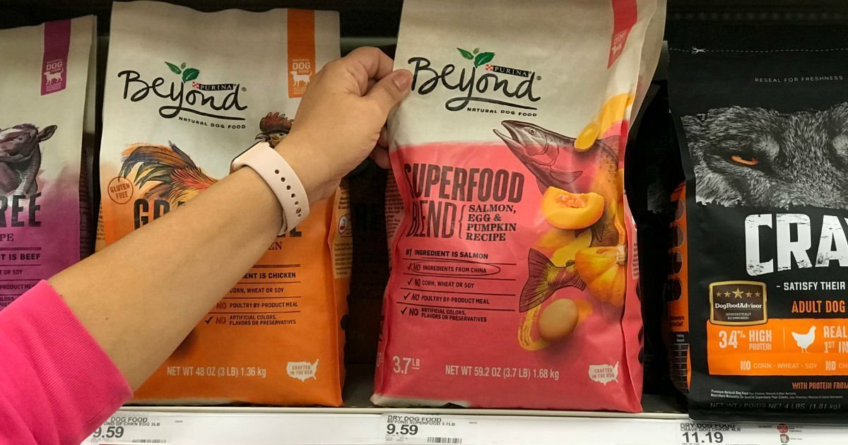 Purina Beyond Dry Dog Food